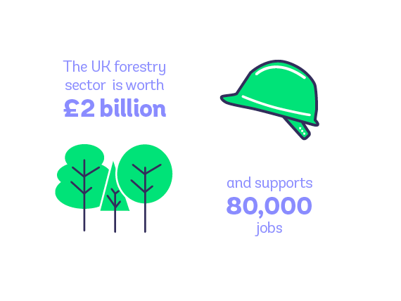 UK forestry sector is worth 2 billion