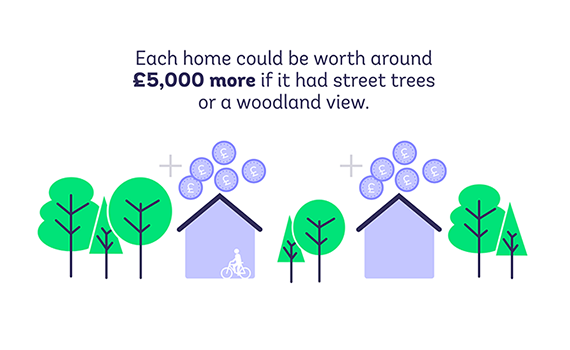 Houses are worth more with street trees