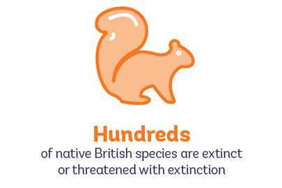Hundreds of British species are threatened with extinction